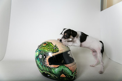 Helmets-003