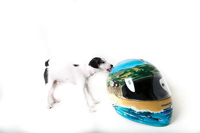 Helmets-026