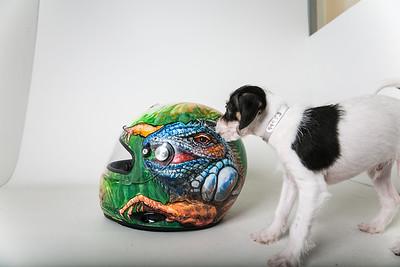 Helmets-010