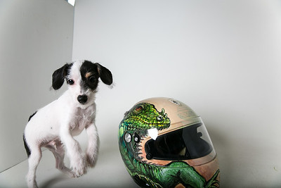Helmets-006