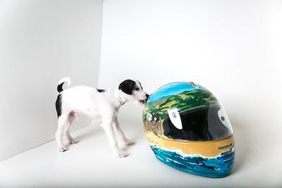 Helmets-025