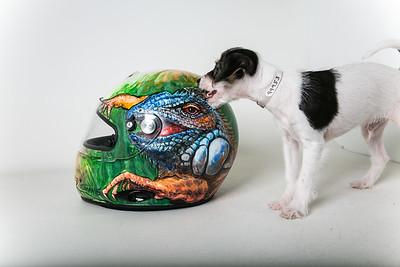 Helmets-008