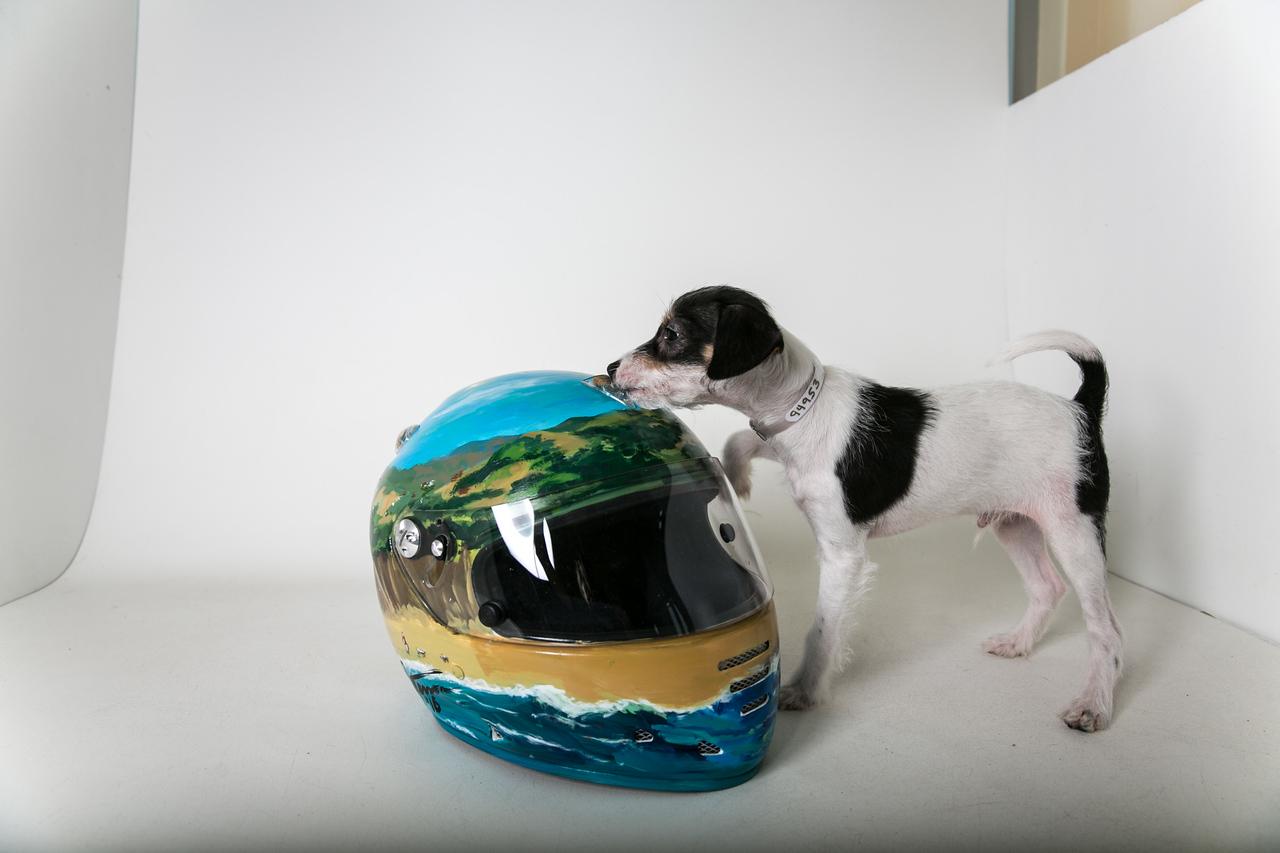 Helmets-022