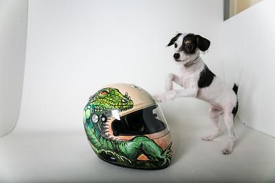 Helmets-004