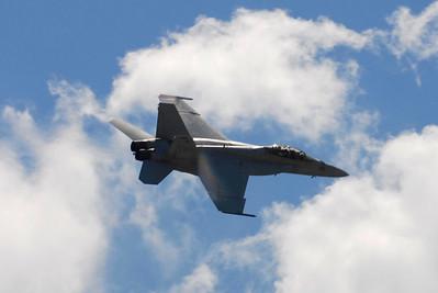 U.S. NAVY F-18 HORNET