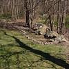 finish side garden