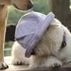 Sambucca hat, Maddie 2