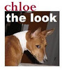 CHLOE The Look