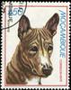 basenji stamp