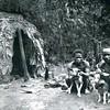pygmies basenjis