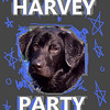 HARVEY cover bday 2