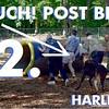 2 Brian Harley Tube notes