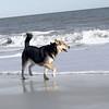 maddie beach_00016