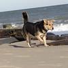 maddie beach_00023