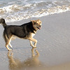 maddie beach_00002