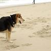 maddie beach_00005