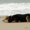 maddie beach_00003