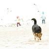 maddie beach_00007