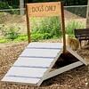 NEW dog ramp  crop