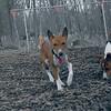 CHLOE & LENNY 3.jpg