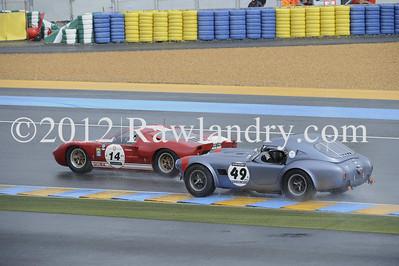 #14 FORD GT 40 1965 & #49 AC Cobra 1963_DSC6210