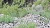 Race Car Rock Crawling Quarry-RLT_9315