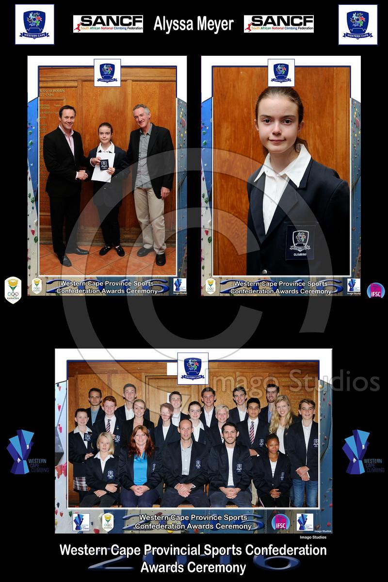 2016 WCPSC AWARDS 3p - 8x12 Collage Team01