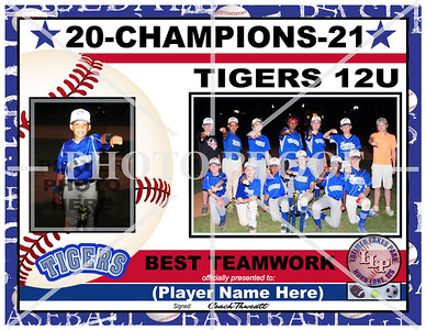 TIGERS 11-12YRS-GROUP PHOTO-CHAMPIONS