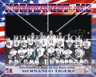 10X8 9-10 HERNANDO TIGERS GRIDIRON