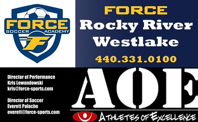 01 Force-AOE Logos