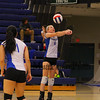 Winnacunnet Warriors Girls Volleyball vs the Astros of Pinkerton Academy on Friday 10-9-2015 @ WHS.  Matt Parker Photos