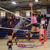 Winnacunnet's #34 Stephanie Rheume elevates to spike the ball during Friday's Girls Volleyball Dig Pink Cancer Awareness Night between Winnacunnet and Alvirne High Schools 10-14-2016 @ WHS.  Matt Parker Photos