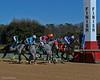 1/17/2014<br /> Race 1