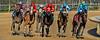1/17/2014<br /> Race 2