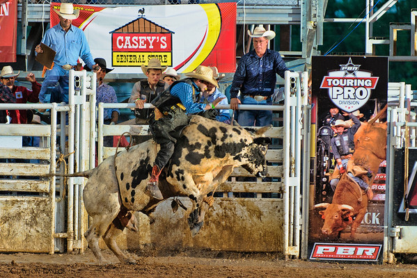 Buckin' in the Ozarks<br /> Professional Bull Riders<br /> Parson's Stadium<br /> August 3, 2013