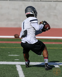 El Camino College practice at Murdock Field on Wednesday August 28, 2019. (Photo by Jevone Moore)