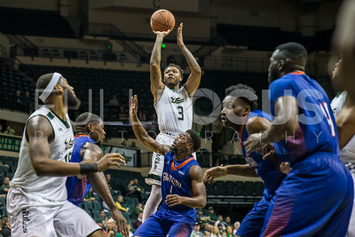 USF Bulls vs Savannah