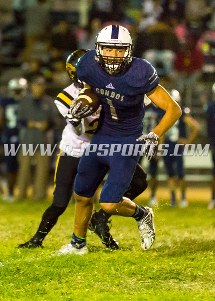 V-1-Brycen Tremaine-WR/DB