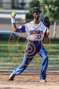 SPORT MENS SOFTBALL