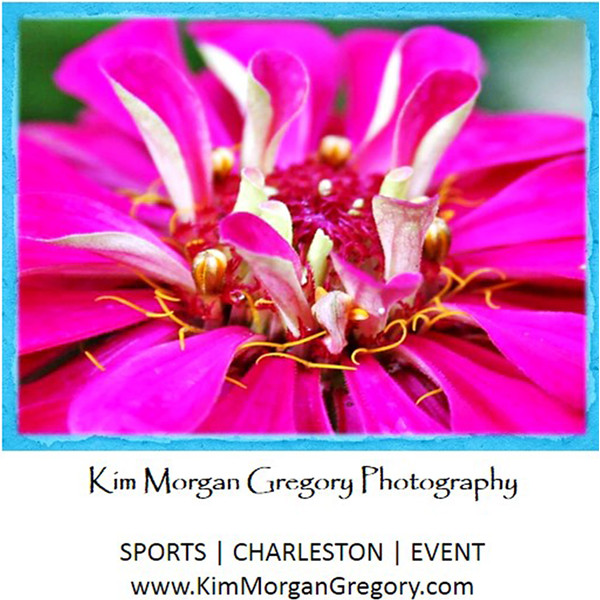 Kim Morgan Gregory Photography