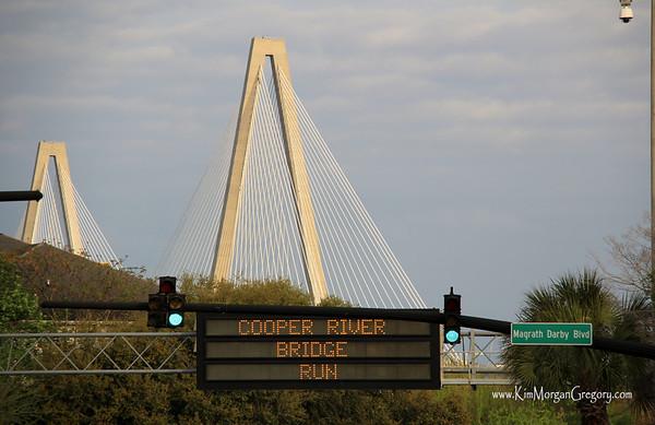 Cooper River Bridge Run   Walk 2014