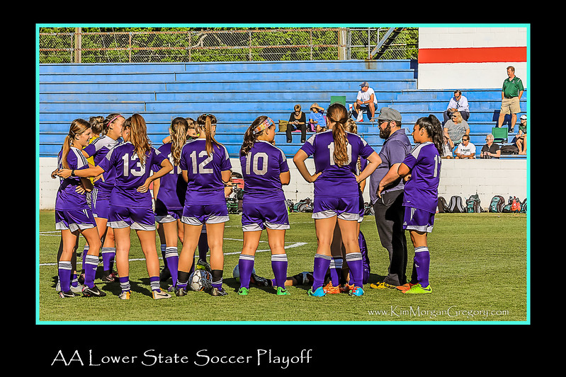 AA LOWER STATE SOCCER PLAYOFFS
