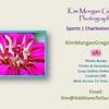 Kim Morgan Gregory Photography Kim Morgan Gregory Photography