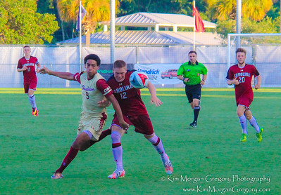 COLLEGE of CHARLESTON vs UNIV of SC