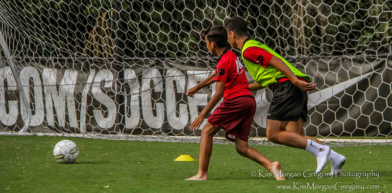 SV ZULTE WAREGEM | Training