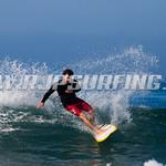 SurflinePro__JPH0172