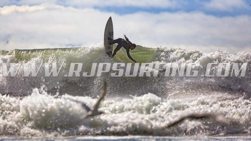 20170204_Surfing_JPH0493T