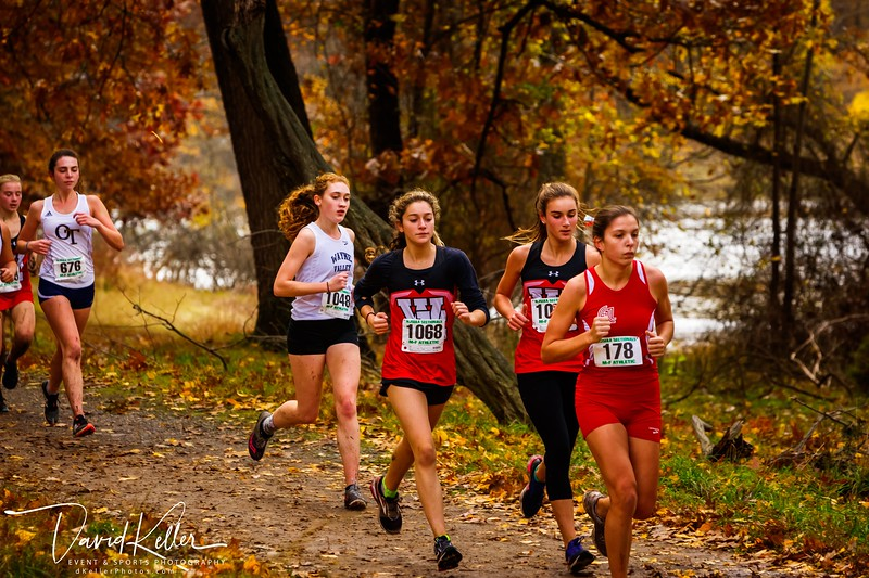 WEHS XC 2018-1103 Girl's State Sectionals 6899