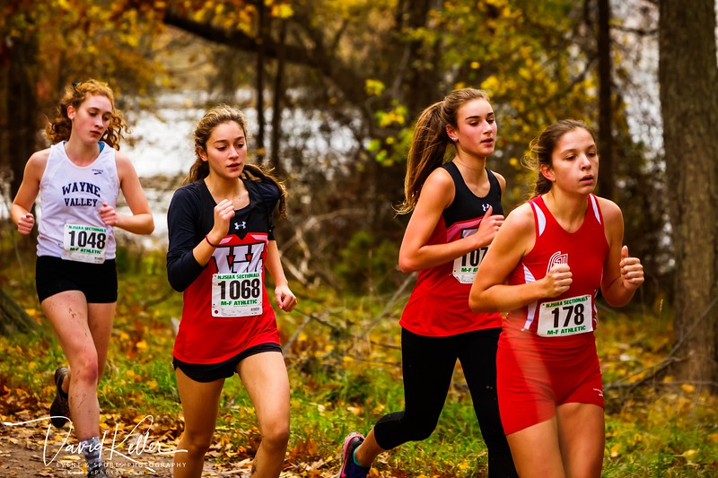 WEHS XC 2018-1103 Girl's State Sectionals 6901-2