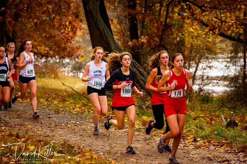 WEHS XC 2018-1103 Girl's State Sectionals 6898